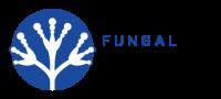 Westerdijk Fungal Biodiversity Institute